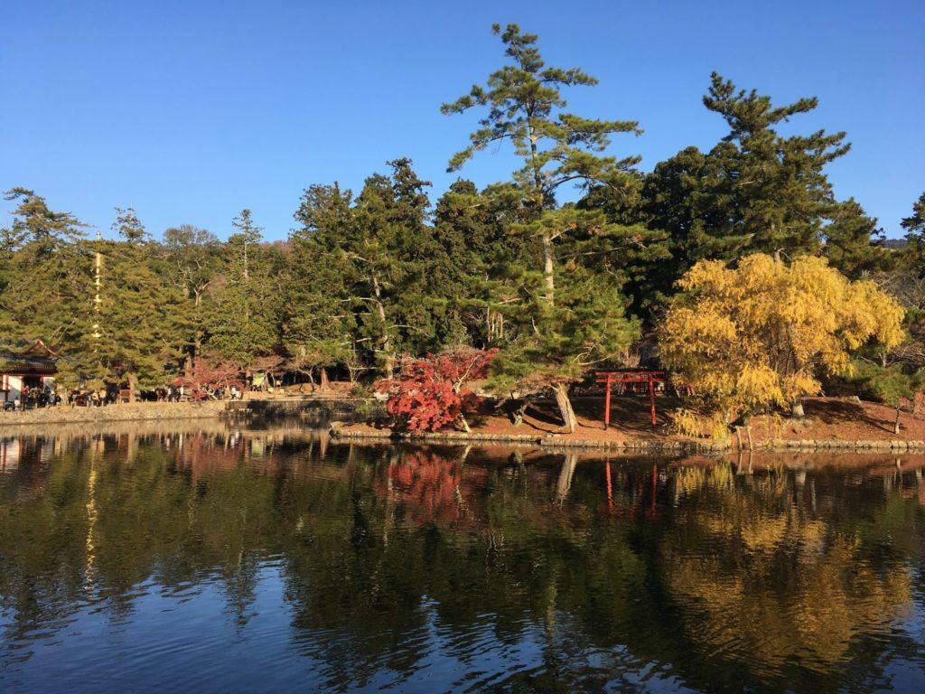 初冬の奈良