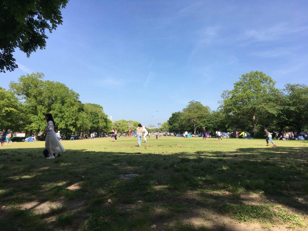 万博公園の芝生